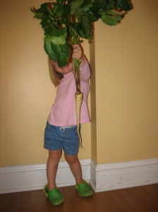 My two-year old, the same height as the parsnip!